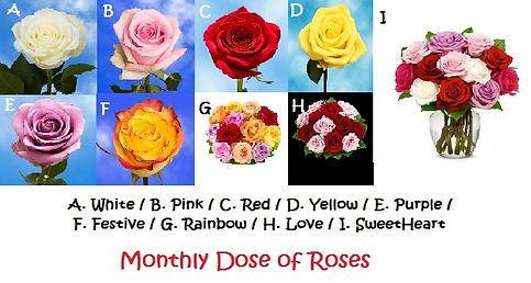 dose of roses.jpg