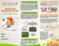 PlantableSeedCard-brochure-front.jpg