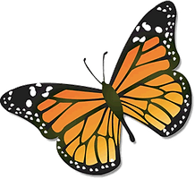 monarch-clipart-Monarch_butterfly_USGS.p