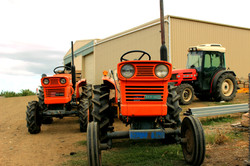 Coal Valley Orchard Tractors on Farm