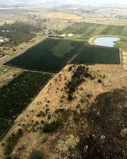 Coal Valley Orchard Farm