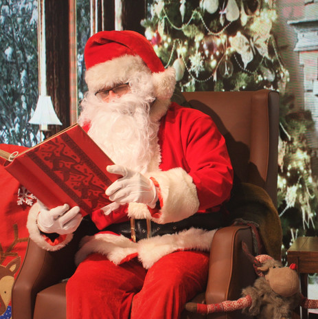 Book your Virtual Santa Experience Today!