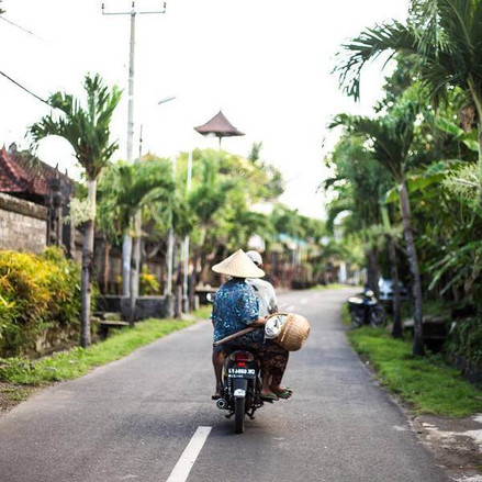 Road along the green trees in Bali