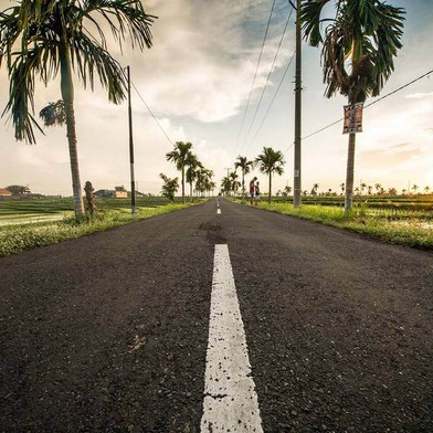 Road along the palm trees in Bali