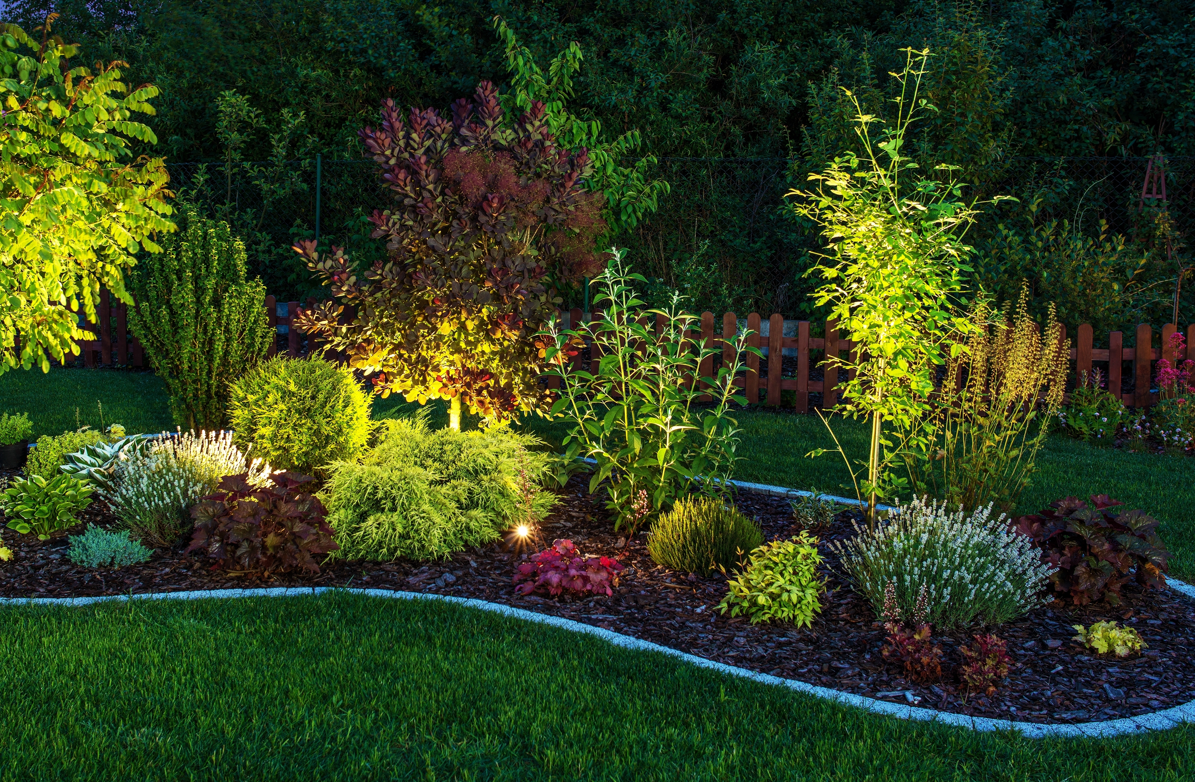 Landscape lighting with trees