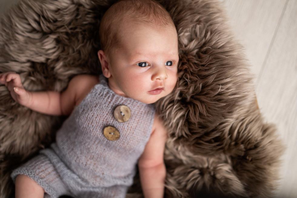 nyfødtfotografering, baby, familiefotografering
