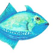 Fish-2_edited.jpg