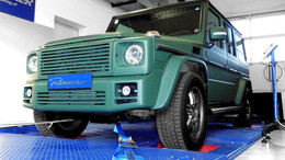 Puch G AMG 55 (5,4 l)
