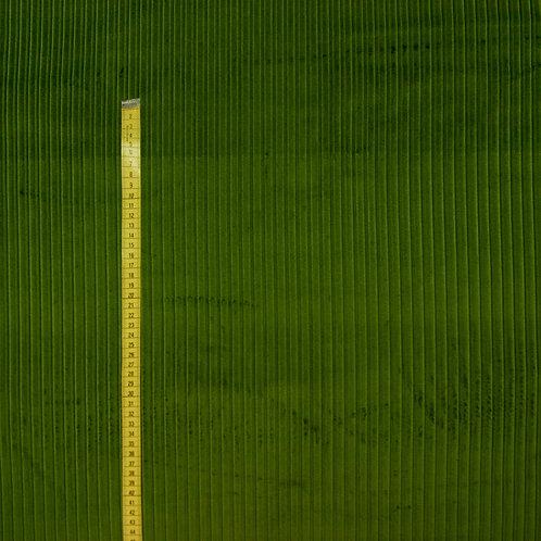 Bio Breitcord - grün