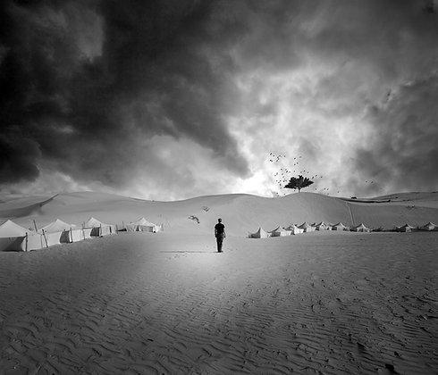 Foto Kunst ***Living Desert*** - Joachim Bergauer