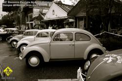 auto100.jpg