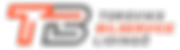 TB_logo_lines_orange_italic_txt.png