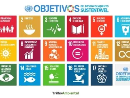 BH fica em 5° lugar no cumprimento das metas da ONU