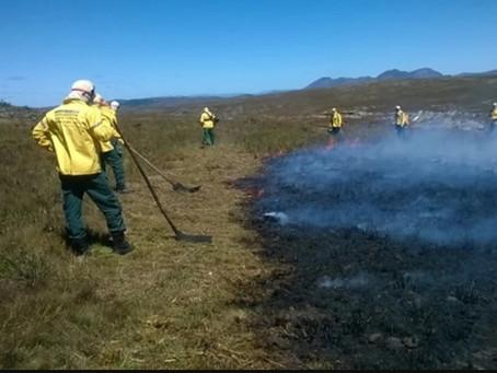ICMBio realiza ações para prevenção de incêndios florestais
