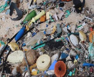Ilha no Pacífico possui maior concentração de lixo do mundo