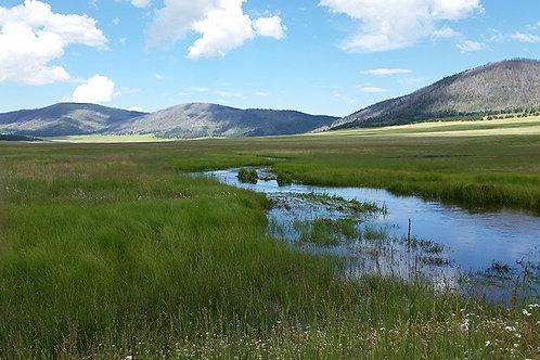 Valle Caldera, Jemez, New Mexico Sacred Site Essence