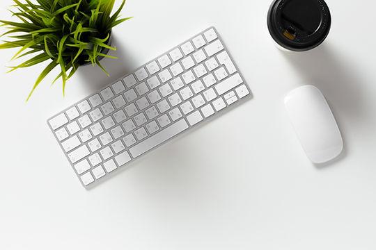 Décors clavier d'ordinateur et souris avec plante verte pour CorazyOwl