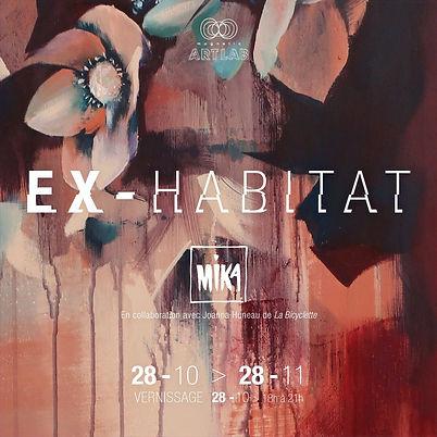 ex_habitat-vignette-2-IG_edited.jpg
