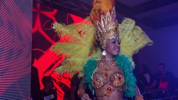 Danseuse_brésil_discothèque.jpg