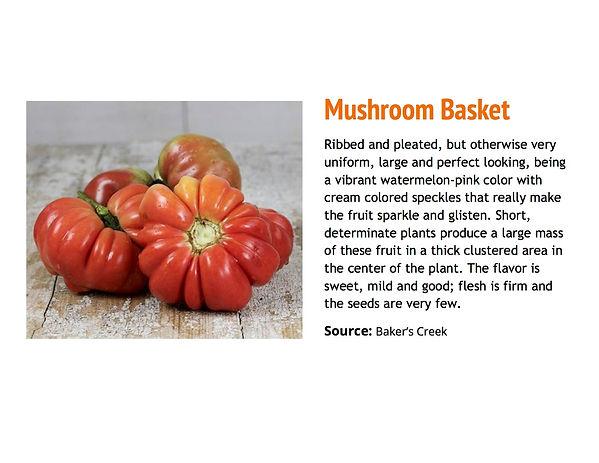 Mushroom Basket.jpg
