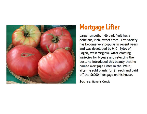 Mortgage Lifter.jpg