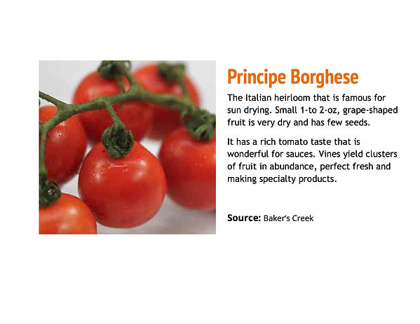 Principe Borghese.jpg