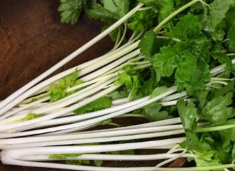 Chinese White Celery