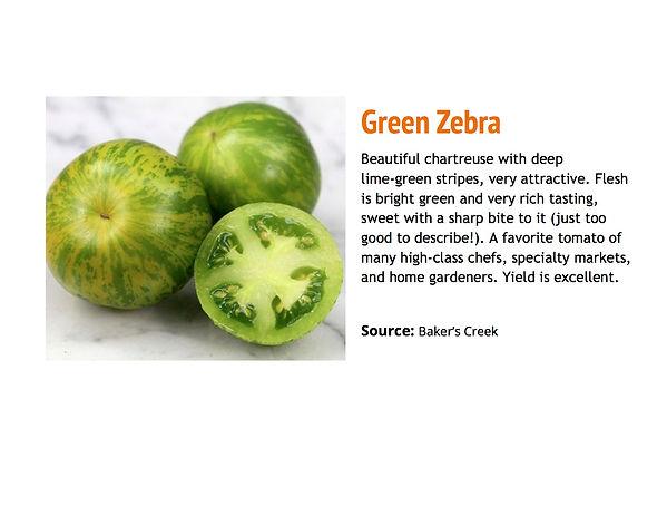 Green Zebra.jpg