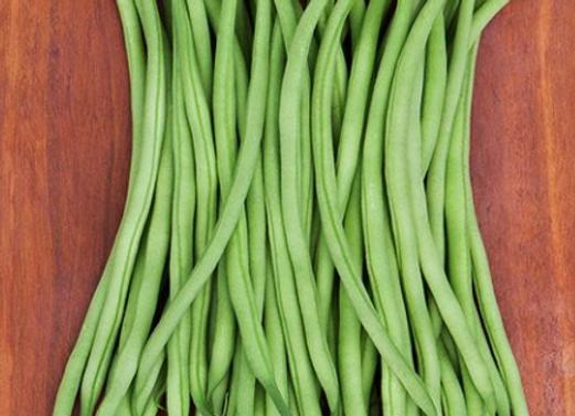 Maxibel Haricot Vert