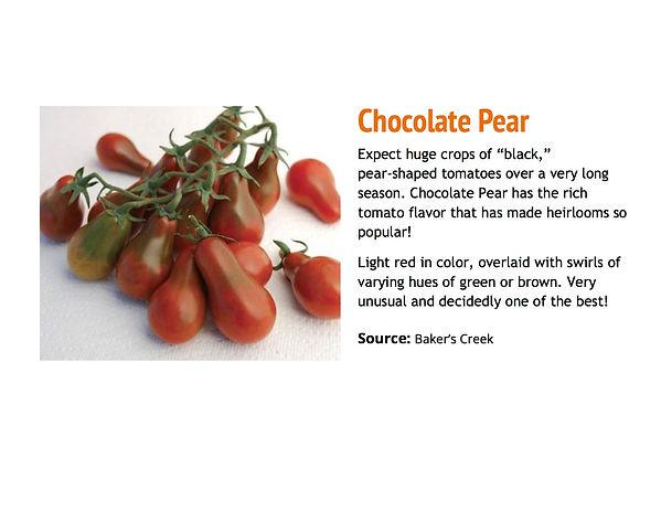 Chocolate Pear.jpg