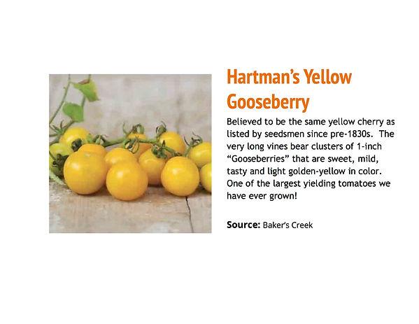 Hartman's.jpg
