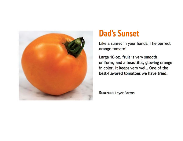 Dad's Sunset.jpg