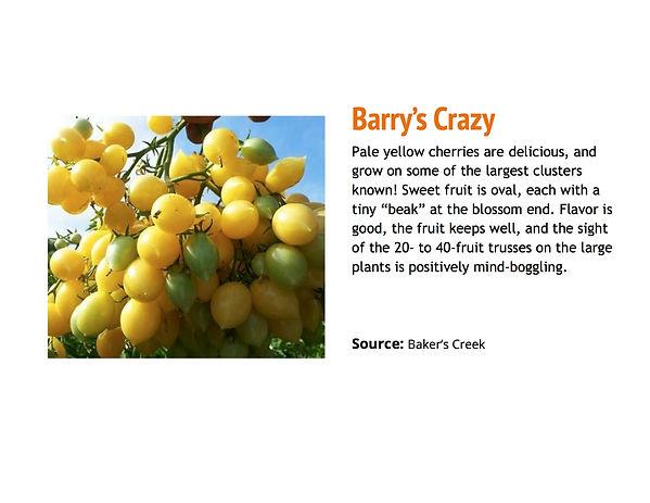 Barry's Crazy.jpg