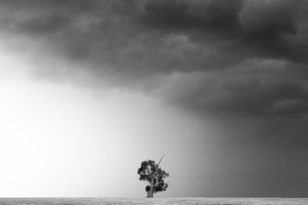 Mono Storm