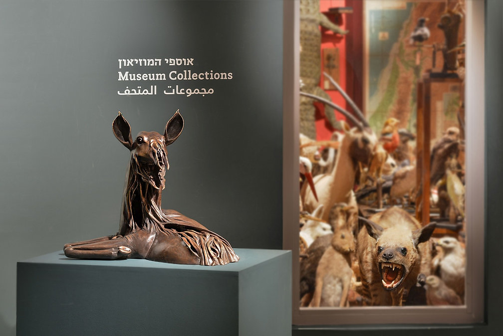 חיה ברונזה במוזיאון איכות גבוהה_edited.j