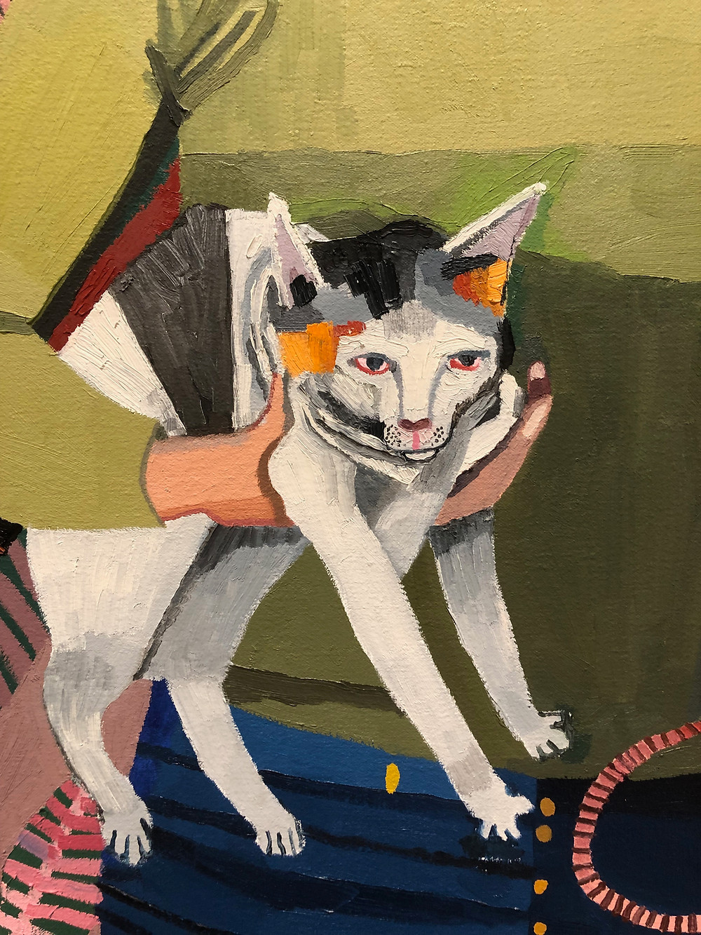 Detail shot of calico cat.