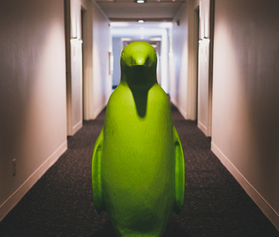 bentonville-penguin.jpg
