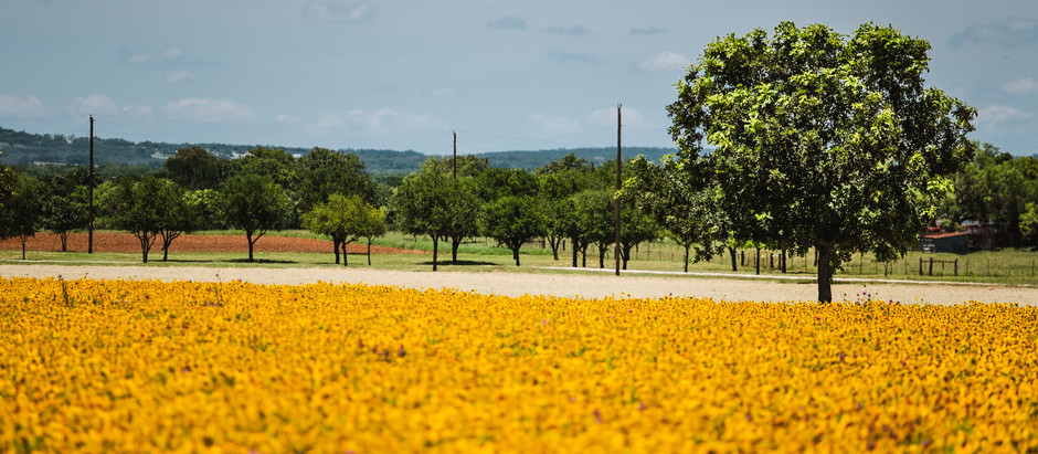 Hill Country Road Trip Map