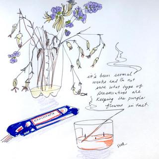 ink in sketchbook, 2020