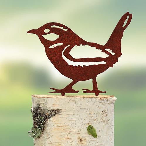 Zaunkönig (Vogel)