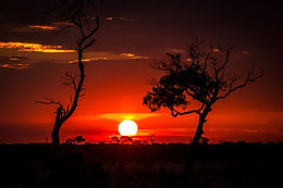 Namibia, Botswana, Africa, Safari, Nature, Naturelovers, Beauty, Sunset, Sunrise, Animals, Wildlife, Scenery, Breathtaking