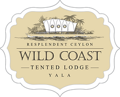 Wild Coast logo beige 7500C.png