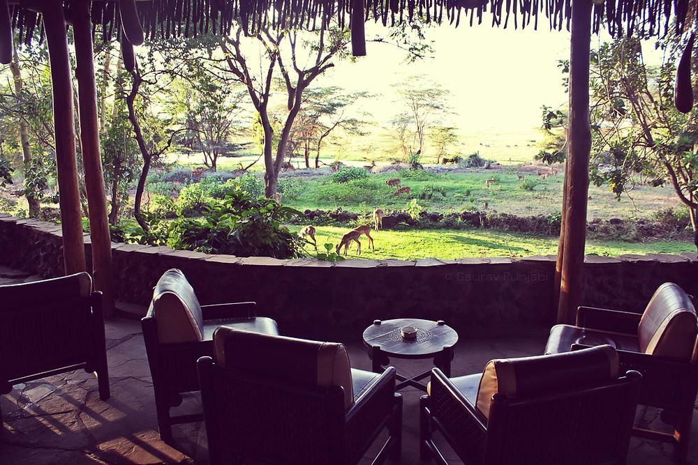 Amboseli4