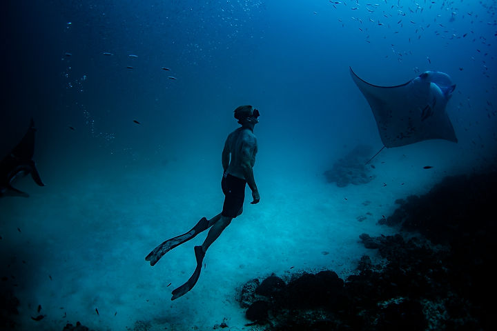 10186_Soneva Fushi - Swimming with Manta
