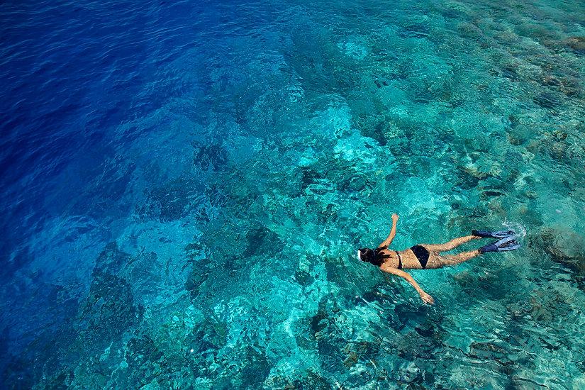 DTMD12_Snorkeling 04.jpg