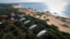 Wild Coast cocoon 12.jpg