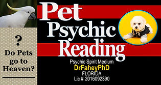 Pet #4.jpg