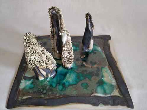 Bonsaï Hippuris argilus