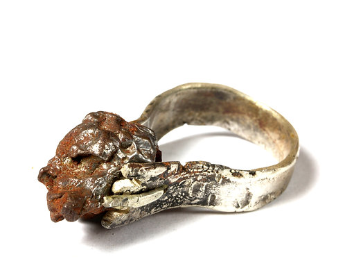 Meteorite Ring by Neil Adcock