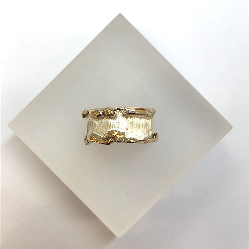 Aurora Gold and Silver Ring